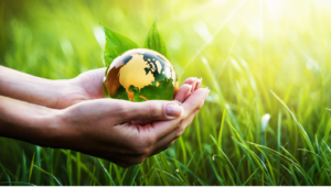 green cleaning service in Overland Park